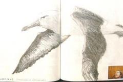 cuadernos481